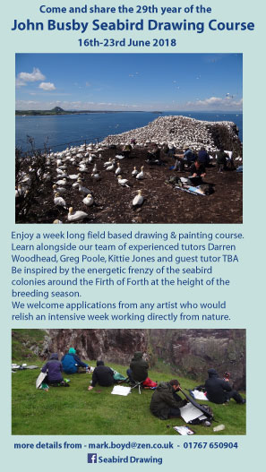 poster for 2018 JB Seabird Drawing course