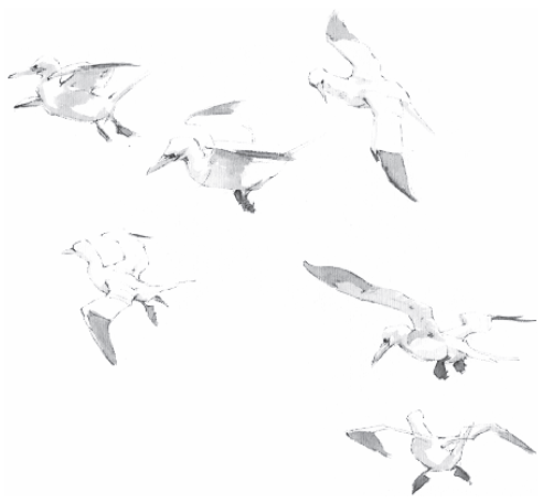 Obituary British Birds Sept 2015 John Busby Artist