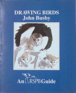 first edition Drawing Birds RSPB