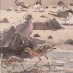 Land Marks and Sea Wings by John Busby