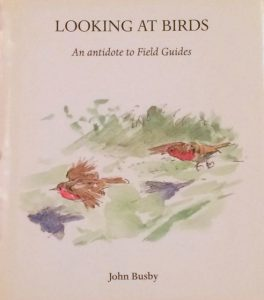 Looking at Birds book cover