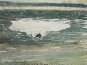 Little Grebe Reflections 2 1988