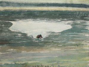 Little Grebe Reflections 2 1988