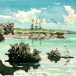 Aldabra lagoon by John Busby