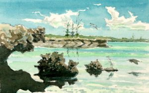 Aldabra – then and now