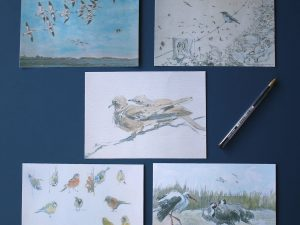 examples of cards in the Collared Dove set by John Busby