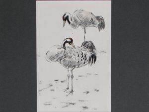 Cranes by John Busby