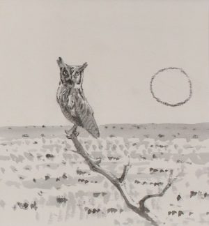 Scops Owl on lookout branch with full moon and flat desert landscape behind by John Busby