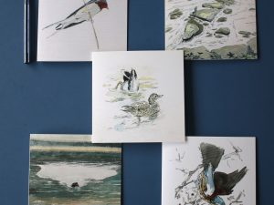 examples of cards in the Mallard Set by John Busby