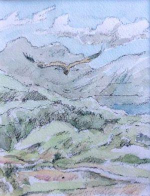 Golden Eagle and highland landscape by John Busby
